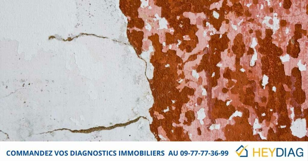 Diagnostic immobilier Plomb Vente