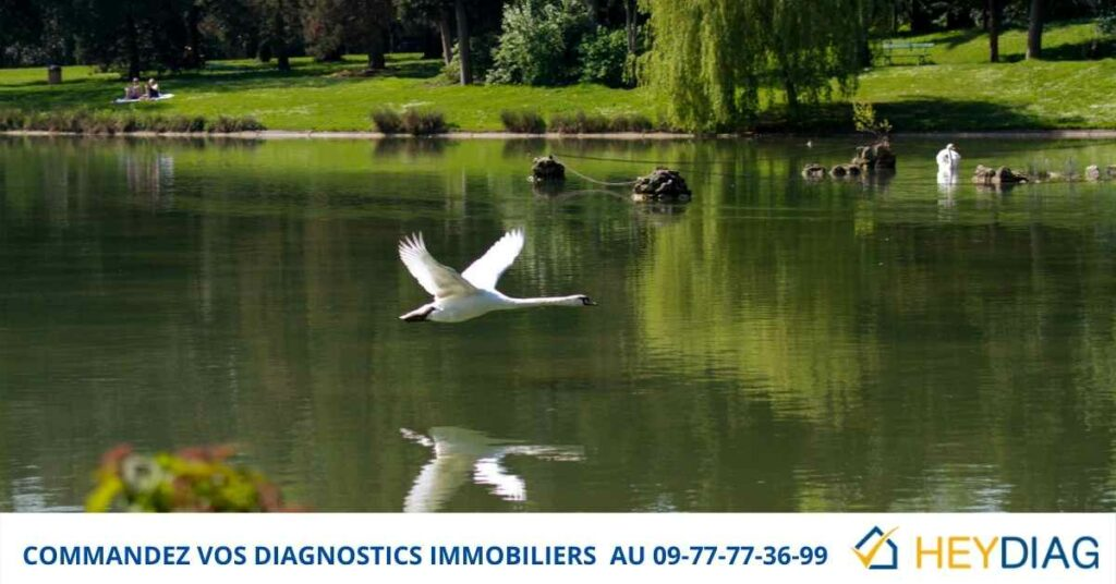 Diagnostics Immobiliers Paris 12 75012